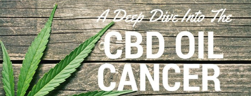 CBD and Cancer – Some Facts You May Not Know