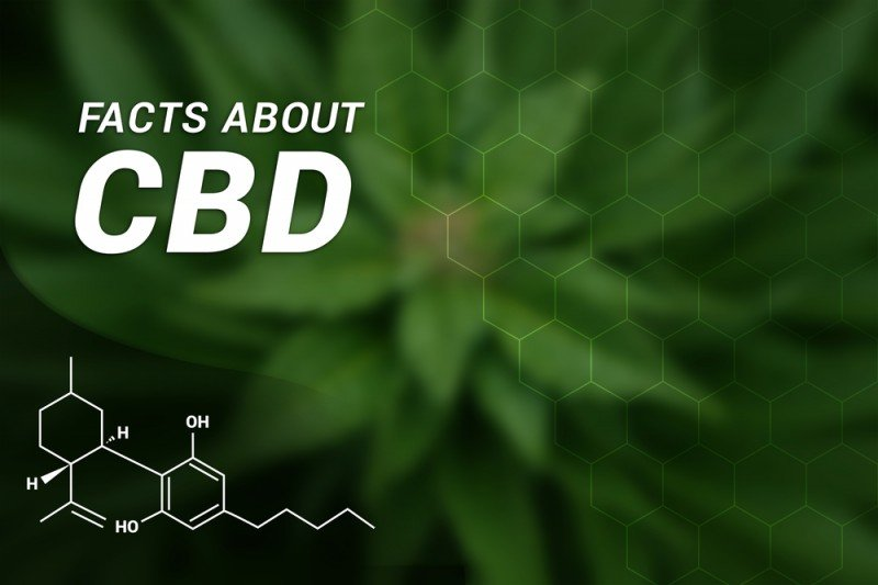 Can Someone Be Allergic To CBD?